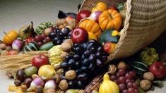Despre alimentația sănătoasă a copiilor
