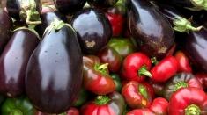 Satul: Şanse pentru legumicultura românească