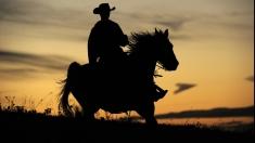 Pasiuni pentru tei şi cowboys, între lecţiile Teleenciclopediei