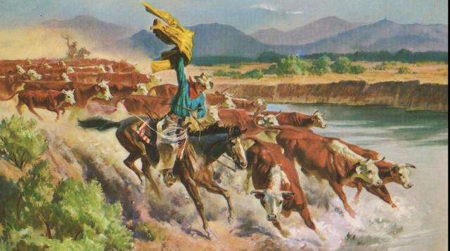(w640) Cowboy