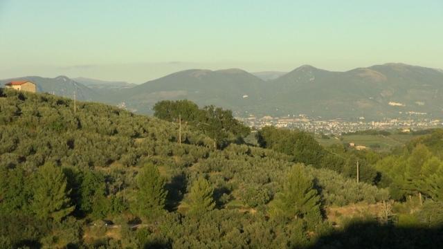 Cap compas, Umbria