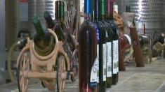 Drumul vinului oltenesc la emisiunea
