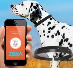 Dispozitive deştepte şi aplicaţii noi, la Zon@ IT