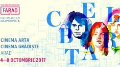 Film la Arad, teatru la Timișoara