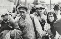 Despre refugiații basarabeni și bucovineni