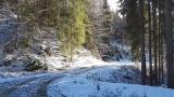 Drumul Baltagului