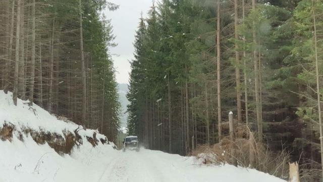 Izolati in Romania