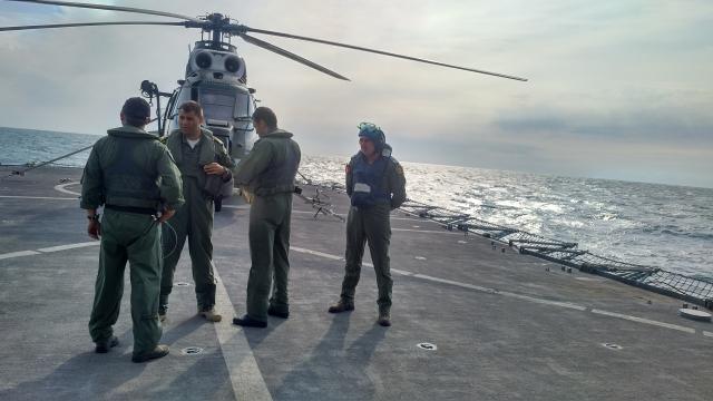 Piloti ai fortelor navale