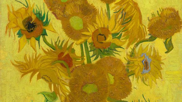Floarea soarelui Van Gogh