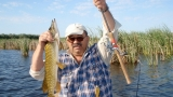 Cum să prindem ştiuca, la Pescar hoinar