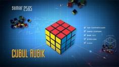 Povestea faimosului cub Rubik la Teleenciclopedia