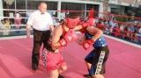 Centura de Aur 2018, competiţia internaţională de box, în direct la TVR 1