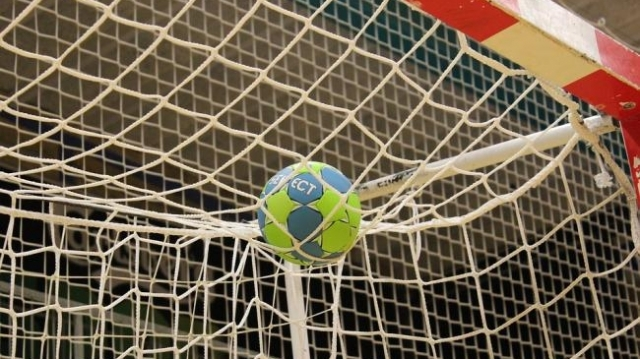 Handbal minge plasa