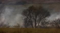 Istorii ascunse în Valea Carașului