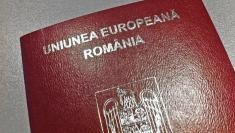 Articolul VII, despre protejarea cetăţenilor români în străinătate