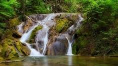 Teleenciclopedia: Comorile Parcului Național Cheile Nerei-Beușnița