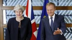 Articolul VII: Ediție specială Brexit