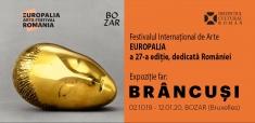 Festivalul EUROPALIA, la Articolul VII
