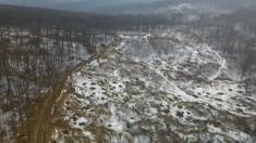 Reacţii în lanţ în Pădurea Bârnova: întinerire vs. conservarea biodiversităţii