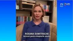 Roxana Dumitrache: Suceava s-a mutat pe Facebook, orașul este pustiu | VIDEO