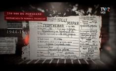 Reporter Special - Caravana filmelor