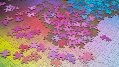 Viață plină de culoare la
