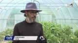 Profesorul fermier | VIDEO