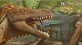 Oasele de urieși din #ȚaraHațegului sunt de dinozauri | VIDEO
