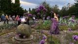 Stagiune estivală la Opera Naţională Română Iaşi. Muzică printre flori  | VIDEO
