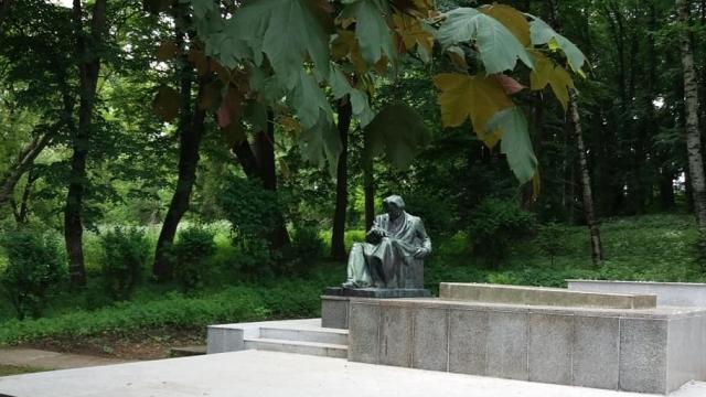 George Enescu Tescani