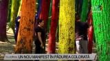 Un nou manifest în pădurea colorată | VIDEO
