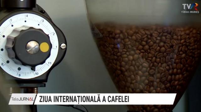 cefea