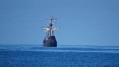 Cap Compas: Poveste de la ocean | VIDEO