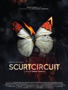 Film 2017 Scurtcircuit
