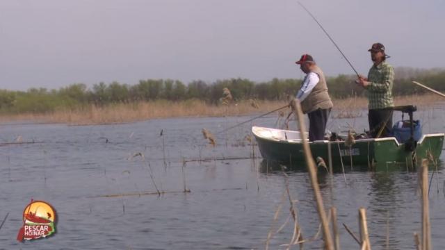 (w640) pescar hoi
