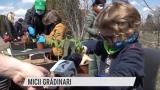 Micii grădinari | VIDEO