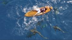 "Primul concurs de paddling printre rechini, la ""Microbist de România"""