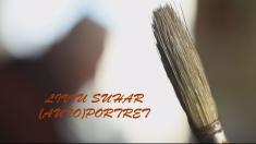 Liviu Suhar - (Auto)Portret, la TVR 3 | VIDEO