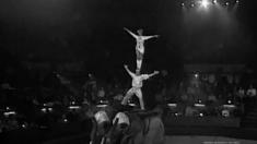 """Prin lumea magică și misterioasă a circului românesc, la """"Adevăruri despre trecut"""""""