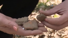 Jdioara: Așezarea dacică descoperită de furnici | VIDEO