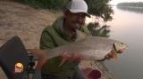 Pescuit la feeder