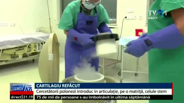 cartilagiu-refacut-cu-celule-stem-la-o-clinica-din-polonia